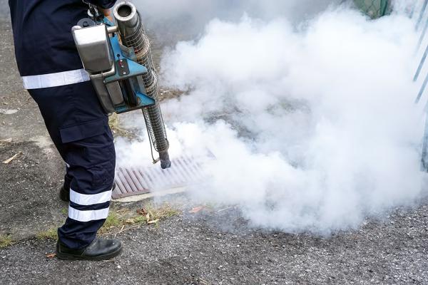 Empresas de control de plagas: Guía para conseguir trabajos